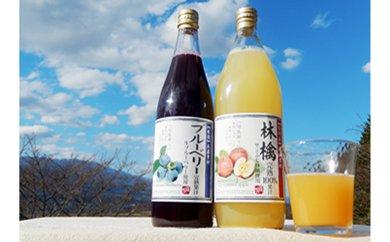28-A38 人気果汁6本セット(TKG-KF07)