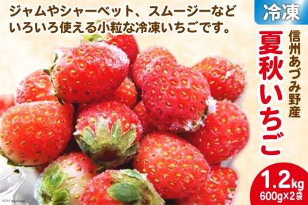 信州あづみ野産 冷凍 夏秋いちご (600g×2袋)【1119753】