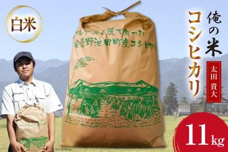 【俺の米】コシヒカリ(白米)10kg<太田貴大>【長野県池田町】