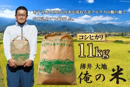 【俺の米】コシヒカリ 11kg(精米)<薄井大地>【長野県池田町】