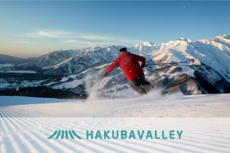 C020-01 HAKUBA VALLEY 9スキー場共通1日券 1枚