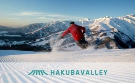 HAKUBA VALLEY 9スキー場共通シーズンパス1枚