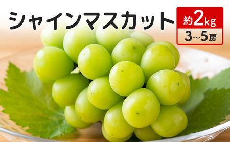 宮原ぶどう園のシャインマスカット 約2kg(3~5房)