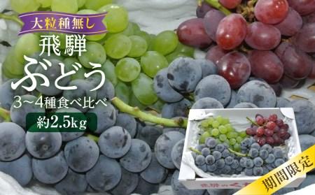 山本果樹園季節の大粒種無しぶどう 詰め合わせ 約2.5㎏(4房~5房) b721