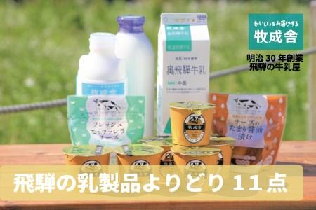 <牧成舎>飛騨の牛乳屋、こだわり牛乳・ヨーグルト・チーズ乳製品よりどりセット a567