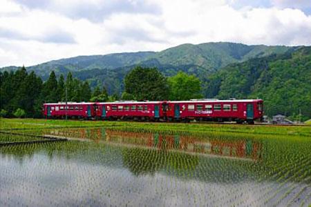 T8-01 長良川鉄道全線1日フリー乗車証