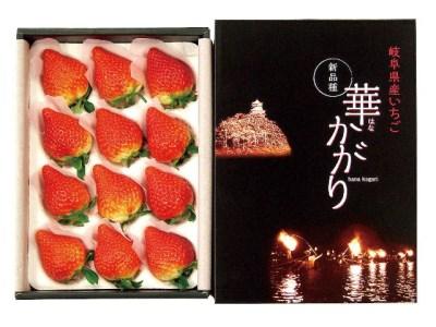 58E012 岐阜県産いちご華かがり 【約300g(9~15玉)×2箱】