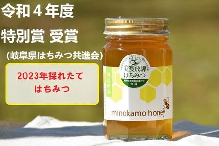MINOKAMO HONEY はちみつ(500g) | 藤井養蜂 非加熱 百花蜜 国産 送料無料 M07S03