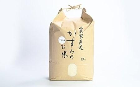 10S01 美濃加茂産のお米(10kg)