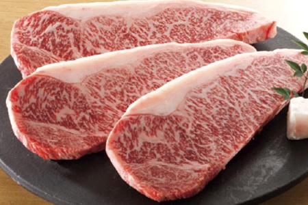 〔頒布会/全4回〕 飛騨牛食べ比べコース