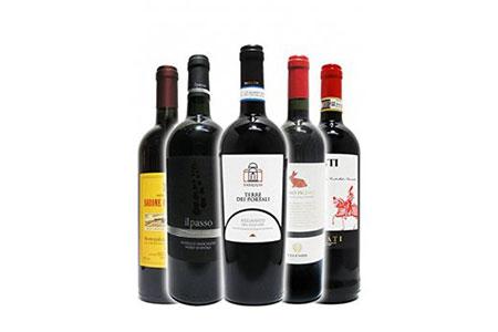 岐阜のきき酒師が厳選した赤ワインセット 厳選イタリア赤ワイン5本セット(750ml×5本)