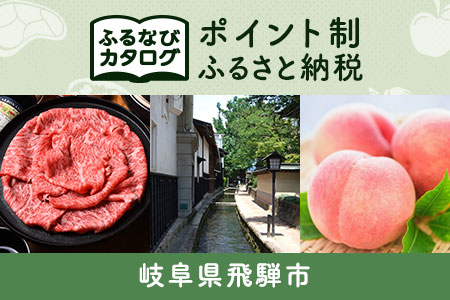 【有効期限なし!後からゆっくり特産品を選べる】岐阜県飛騨市カタログポイント