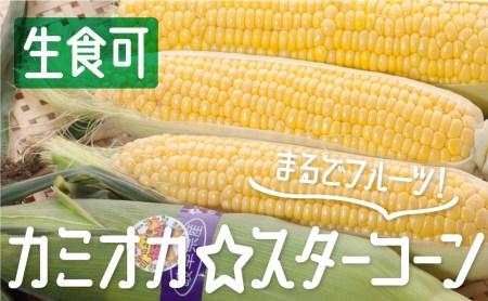 《事前予約》《期間・数量限定》まるでフルーツ!特別栽培トウモロコシ 激甘!極旨のスーパースイート系トウモロコシ「カミオカ☆スターコーン」3kg!6~8本お届け[B0107]