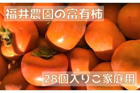 [柿の王様]福井農園の富有柿ご家庭用M・Lサイズ(28個) [0150]