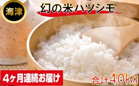 幻の米ハツシモ10kg(4ヶ月連続届)