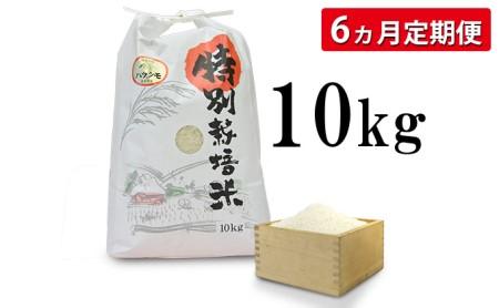 【先行予約】【6カ月定期便】安八町産 ハツシモ(ぎふクリーン米)10kg 令和3年産【精米】