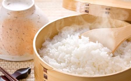 揖斐郡産 味のいび米はつしも精米10kg×2袋