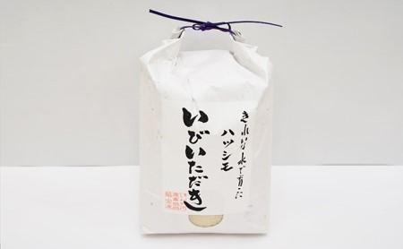 JAいび川プレミアム「いびいただき」/ 白米 5kg×2袋