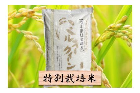 【2600-0412】特別栽培米 ミルキークイーン 精米5kg
