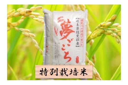 【2600-0413】特別栽培米 夢ごこち 精米5kg