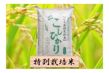 【2600-0418】特別栽培米 コシヒカリ 精米10kg または 玄米1割増