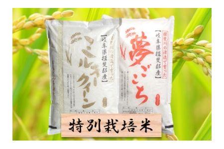 【2600-0428】特別栽培米 ミルキークイーン/夢ごこち 精米4kg (各2Kg)
