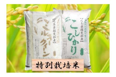 【2600-0429】特別栽培米 ミルキークイーン/コシヒカリ 精米4kg (各2kg)