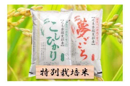 【2600-0430】特別栽培米 コシヒカリ/夢ごこち 精米4kg (各2kg)