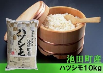 【2600-0125】【H30年新米】 池田町産ハツシモ 10kg