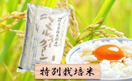 特別栽培米★白米5kg【ミルキークイーン】