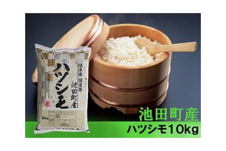 【2600-0300】【H30年新米】 池田町産ハツシモ 10kg