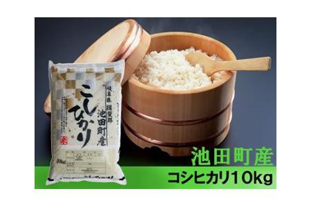 【2600-0301】【令和元年新米】池田町産コシヒカリ 10kg