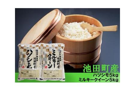 【2600-0303】【H30年新米】池田町産ハツシモとミルキークイーン 5kgずつ計10kg