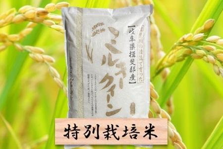 【2600-0036】特別栽培米 ミルキークイーン 精米10kg(分搗き可)または 玄米1割増