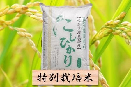 【2600-0037】 特別栽培米 コシヒカリ 精米10kg(分搗き可) または 玄米1割増