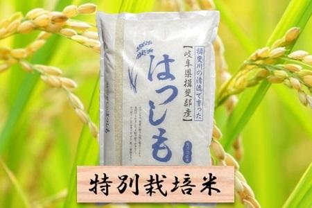 【2600-0038】 特別栽培米 ハツシモ 精米10kg(分搗き可) または 玄米1割増