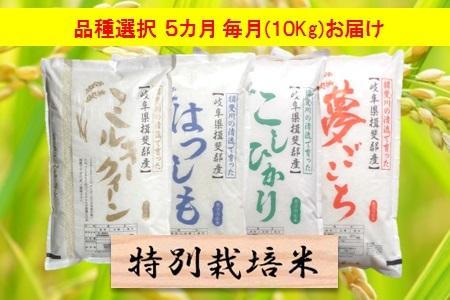 【2600-0052】 【5カ月定期便】特別栽培米 4品種より選択 10kg×5 回 精米(分搗き可) または 玄米1割増
