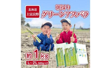 アスパラ専門農家の特選グリーンアスパラ1kg(L~2L)