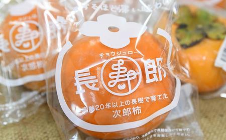 11月より順次出荷 鮮度保持袋入り テルの次郎柿『長寿郎』24玉~36玉入り