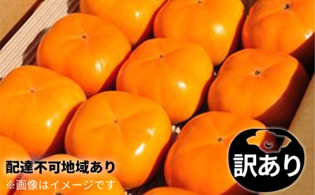 11月より順次出荷 お徳用わけあり テルの次郎柿『長寿郎』32玉~42玉入り
