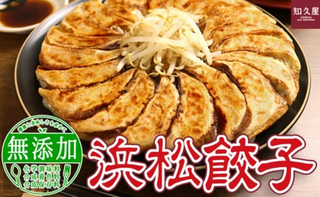 知久屋「ちくや」浜松餃子たっぷりセット(無添加ぎょうざ100個)
