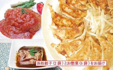 [№5786-1032]遠州浜松「知久屋健康惣菜」ちくや浜松餃子とお惣菜セット