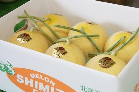 黄美香(青肉)メロン5~6玉 8kg以上【BQ-003】