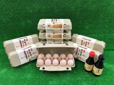 210_純系名古屋コーチン卵(50コ入)卵かけご飯セット[2018]