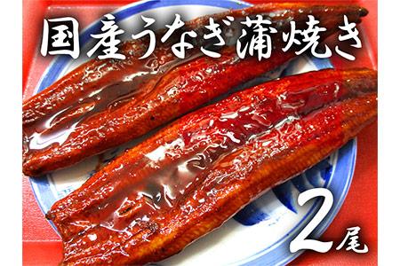 a15-019 スギヤマ特選国産うなぎ 2尾!