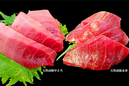 001-243 まぐろの魚二厳選  天然南鮪中トロ赤身セット