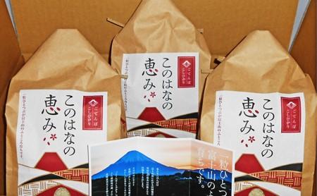 [№5565-0007]御殿場コシヒカリ・このはなの恵み・2kg詰3袋