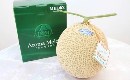 静岡温室メロンアローマ 1玉【マスクメロン】