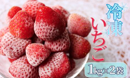 冷凍イチゴ2kg(2020年第31回静岡県いちご果実品評会入賞)