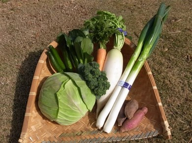 (Aa-03)湯の花 季節の野菜セット